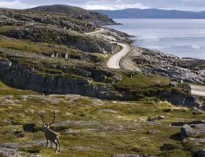 255-havoysund-umg-nasjonaleturistveger