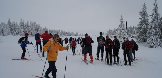 wiege skisport