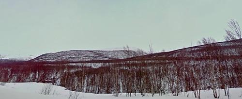 julelvdalen-julahaugen-julelva-png