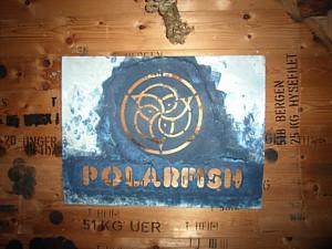 polarfisch
