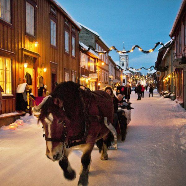 roeros-julemarked-hest