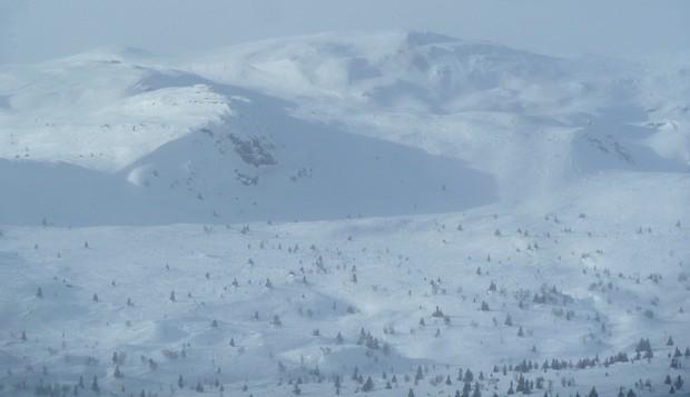Survival im Gebirge