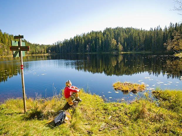 Oslomarka, (c)   Terje Borud - Visitnorway.com