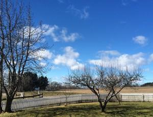 Helgoya - Ein Tag im April
