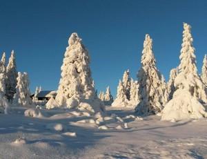 Herrliches Winterwetter in Lillehammer Copyright Annegret Kellmann