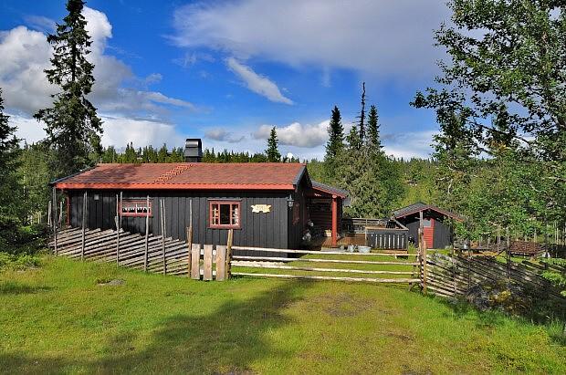 Ferienhaus in Norwegen im Gebirge