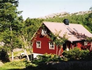 furrevik1