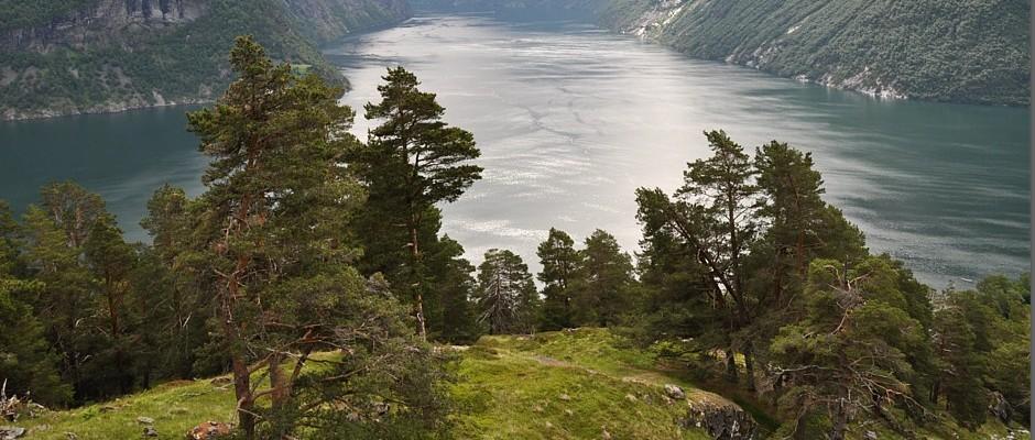 Blog – Norwegeninfos