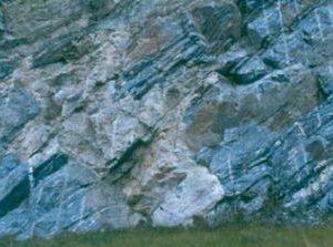 stein-gneis