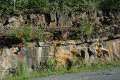 Fossilien im Oslograben