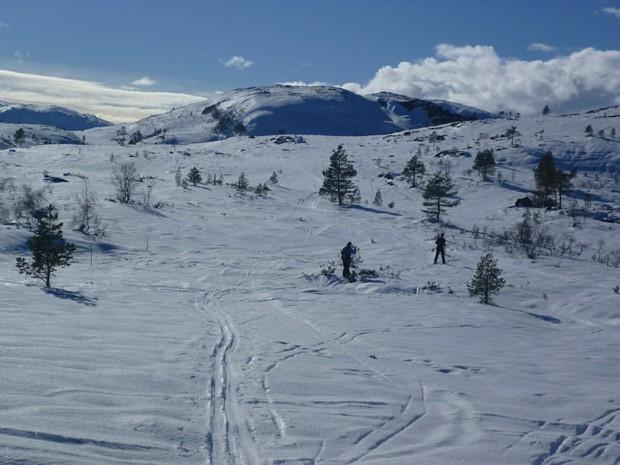 Auf Ski