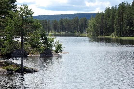 Fjordaseen