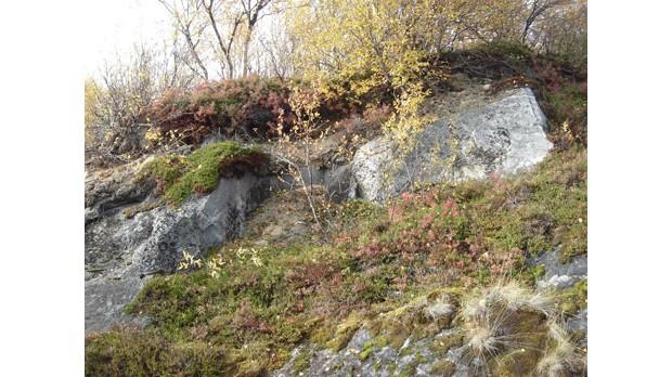 Europas ältestes Gestein, Foto: Pavel Kepezhinskas