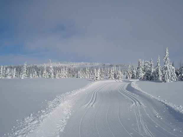 Langlauf Lillehammer
