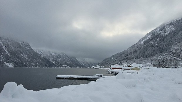 Winter am Fjord