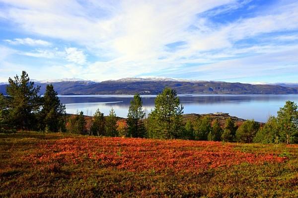 Herbst in Alta rote Farben Copyright Saskia Sehmisch