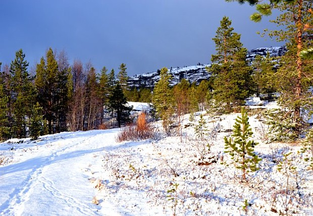 Erster Schnee im Norden – Copyright Saskia Sehmisch
