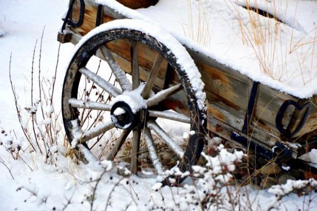 Wagen, Winter, Rad, in Alta Copyright Saskia Sehmisch
