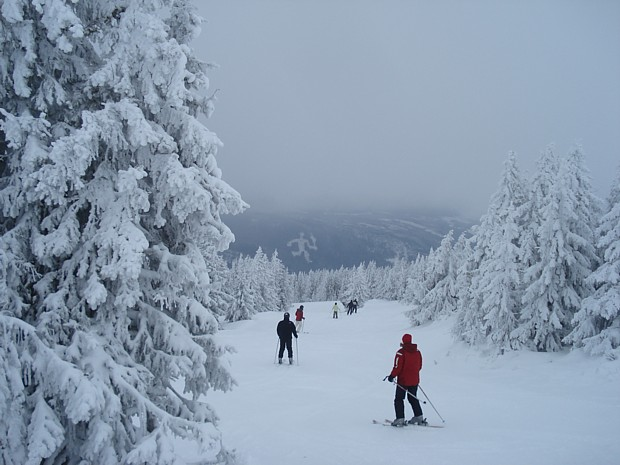 Ski fahren Hafjell Winter