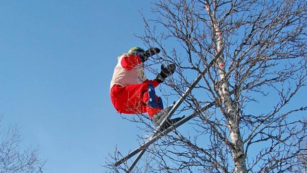 Sprung in den Baum Copyright nrk
