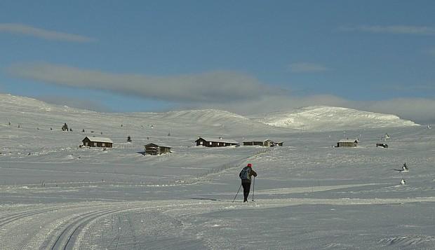 Langlauf auf dem Venabygdsfjell Copyright Thomas Koschitzki