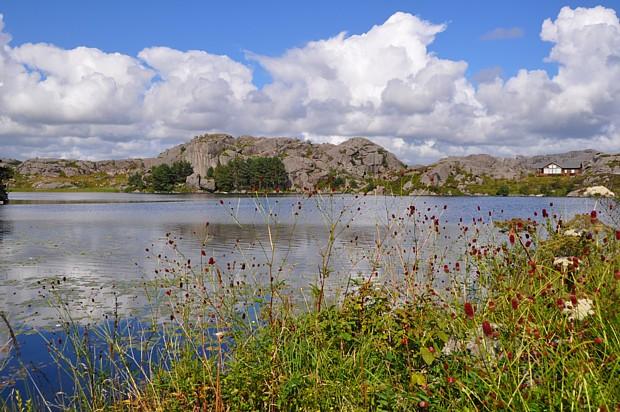 Dalane Berge Blumen See