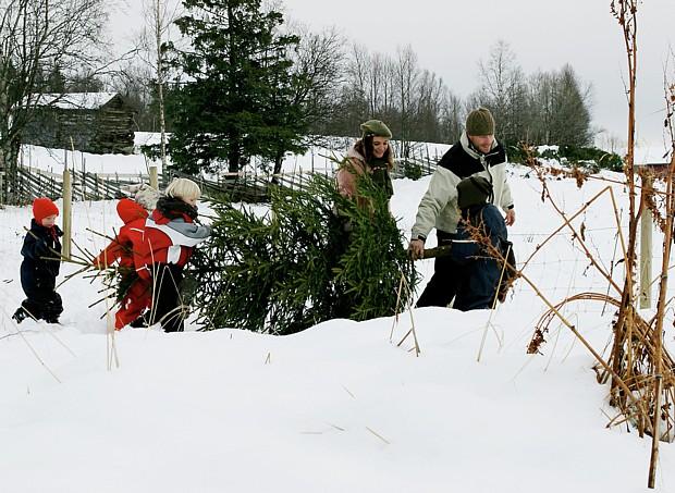 Weihnachtsbaum Beitostolen-Copyright Thomas Skyum – Visitnorway