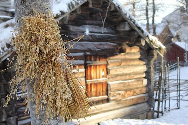 Julenek Weihnachtsgarbe Norsk-folkemuseum-cop-theresa-soereidenorsk-fokemuseum-visitnorway