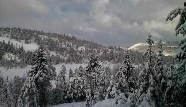 Nissedal Telemark Copyright Tessa Winter