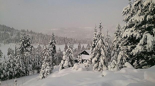 Nissedal Winter und Schnee Copyright Tessa Winter