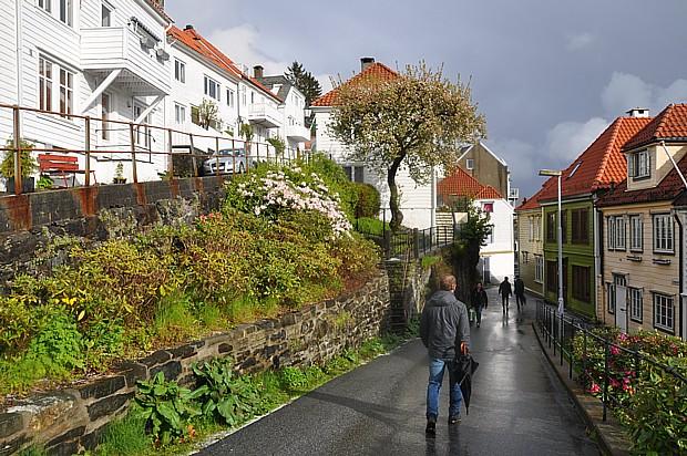 Fruehling Bergen, Frühling, Blumen
