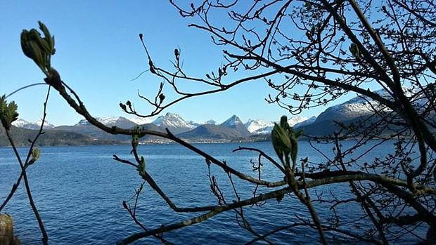 Ostern Heiko Scholze Fjord Frühling Blüte