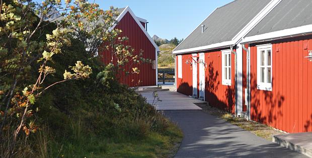 Ferienhäuser Norwegen Hütte Ferienhaus Unterkunft