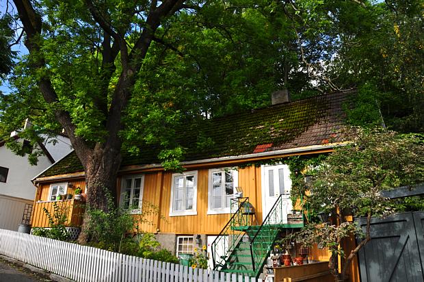 Holzhaus Telthusbakken Oslo Wohnen Baum typisch