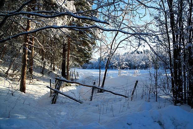 Alta Winter Schnee Zaun Wald