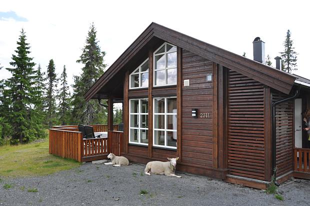 Der Tipp - Ein Ferienhaus in Norwegen buchen