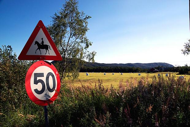 Alta Pferd Verkehrsschild