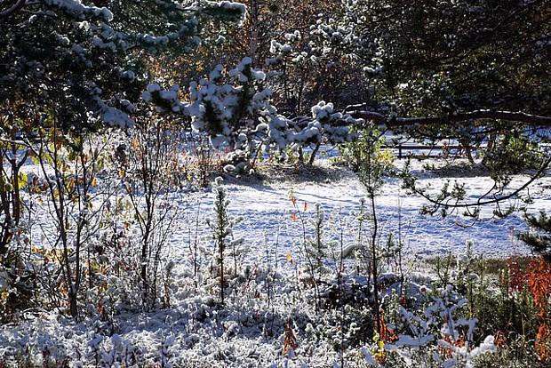 Der erste Schnee in Alta