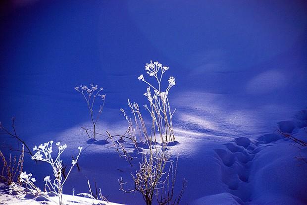 Winterstimmung Alta -Saskia Sehmisch
