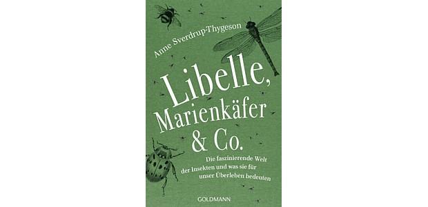 Libelle Marienkaefer Buch